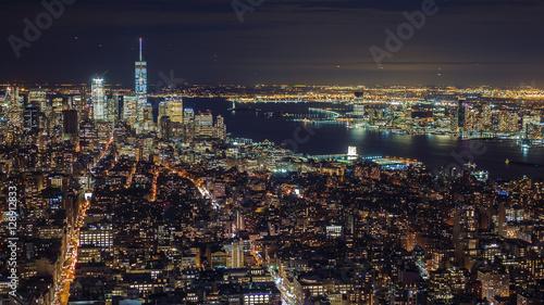 Aluminium Palm boom Manhattan aerial panorama cityscape skyline. Far ahead of the Statue of Liberty can be seen. New York City, USA