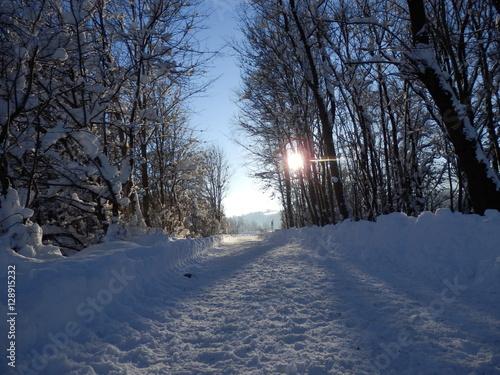 Morgens an der winterlichen Iller