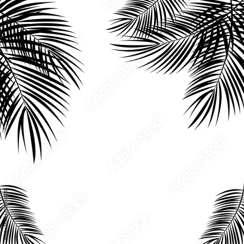 Black Palm Leaf on White Background. Vector Illustration.