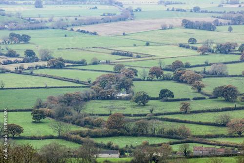 Poster Somerset Levels landscape.