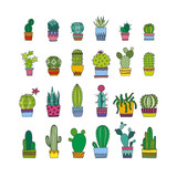 doodle cactus and succulents - 128996420