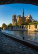 Notre Dame de Paris cathedral at sunset with the Seine River and Ile de La Cite. Paris, France