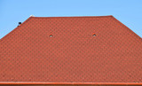 House roof covered with shingle