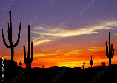 Papiers peints Arizona Wild West Sunset with Cactus Silhouette