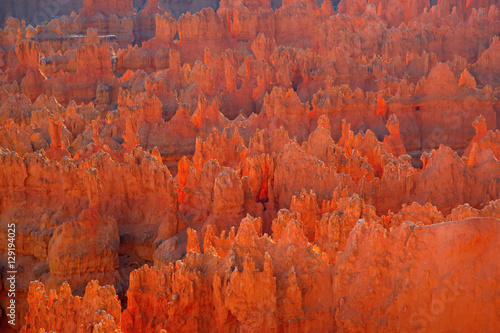 Fotobehang Rood traf. Bryce canyon