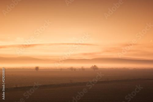 Foggy Landscape Poster