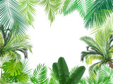 Tropical jungle background with palm tree and leaves.  - 129216884
