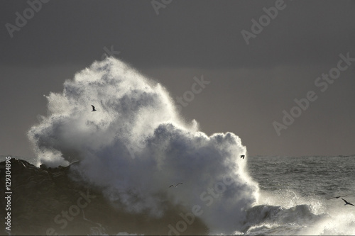 Autumn and winter sea storm