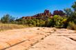 Sedona desert beauty