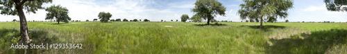 Papiers peints Photos panoramiques Seamless 360 degree panorama of South Sudan
