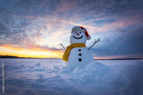 Bonhomme de neige Poster