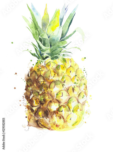 Pineapple fruit handmade watercolor painting on white background - 129382883