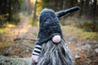 Forest gnome 1