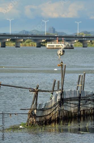 琵琶湖のえり漁 Плакат