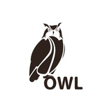 Owl logo design, night hunter logo, bird logo.