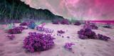 alien landscape - 129591059