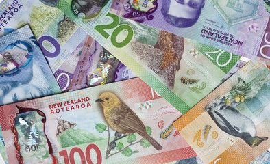 New Zealand money © enjoynz