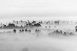 Fototapety sea of clouds over the forest, Black and white tones in minimalist photography