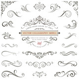 Calligraphy swirls, swashes, ornate motifs and scrolls. Vector illustration. - 129656095