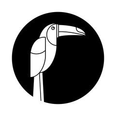 brazilian toucan bird nature pictogram vector illustration eps 10