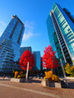 Calgary downtown during autumn, Alberta, Canada