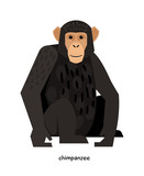 Chimpanzee -monkey, having higher level of nervous activity than the others - 129806080