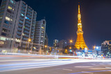 Tokyo Tower is most famous landmark of Tokyo City.