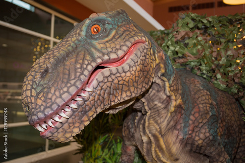 Poster ancient reptile trex of jurassic with big eyes