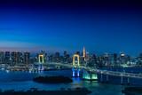お台場から眺める東京の夜景(レインボーブリッジ、東京タワー)