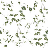 Watercolor illustration of leaf, seamless pattern on white background - 130062284
