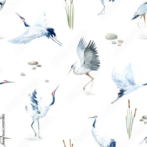 Fototapeta Watercolor crane pattern