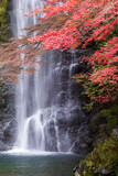 Minoo waterfall in autumn, Osaka, Japan
