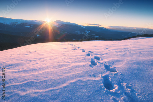 Fotobehang Lichtroze The track of footprints on a fresh snow