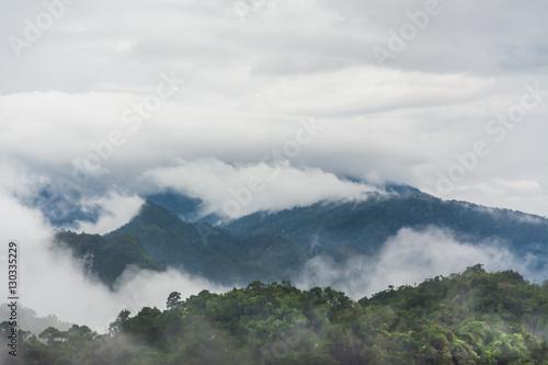 landscape of mountain and fog , Krabi ,Thailand - 130335229