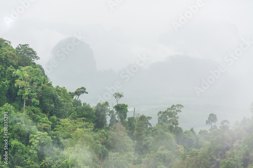 Poster landscape of mountain and fog , Krabi ,Thailand
