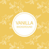 Vanilla flower sketch on light-yellow background square composition