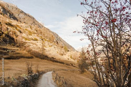 Poster Zermatt, Dorf, Bergdorf, Wallis, Alpen, Schweizer Berge, Wanderweg, Wanderferien