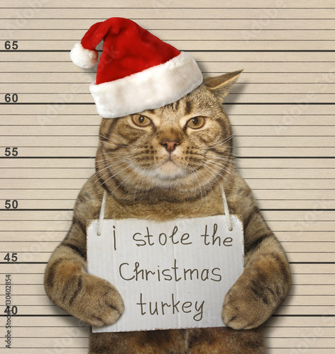 Poster The big cat stole the Christmas turkey. It was convicted.