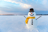 snowman © ivan kmit