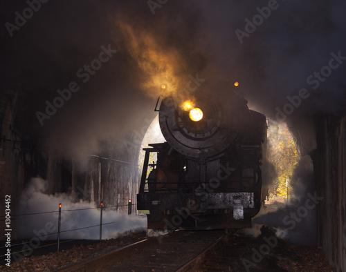 Steam locomotive enters tunnel Poster
