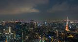 Aerial view of Tokyo Skyline Tokyo, Japan