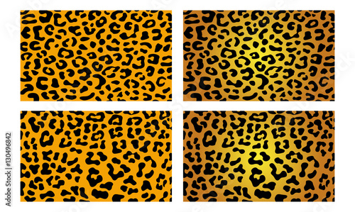 Fototapeta Leopard Cheetah Jaguar Wildlife Vector Skin Pattern