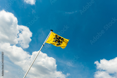 Fotobehang Antwerpen Flag of Flanders - Vlaamse Leeuw