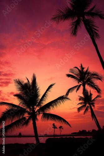 Foto op Canvas Baksteen Hawaiian Sunset on Big Island Anaehoomalu Bay