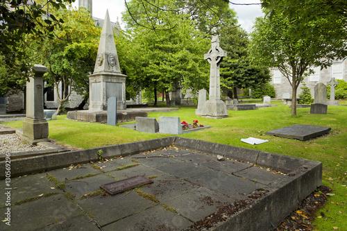 Irish cemetery with Irish crosses  Poster