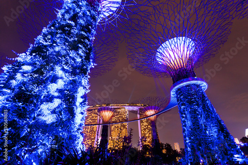 Obraz na plátne Light show at the Gardens by the Bay in Singapore