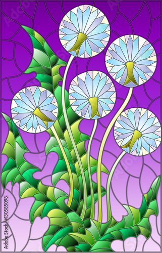 illustration-in-stained-glass-style-flower-of-blowball-on-a-purple-background