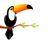 illustration of a cute toucan sitting on branch with leaves