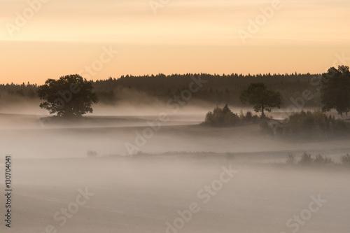 Deurstickers Toscane Misty Landscape Morning