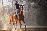 Young girl riding a horse - 130713622